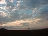 sunrise-acacia.jpg